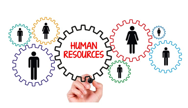 5 Tips on How to Get Great HR Support for Your Company
